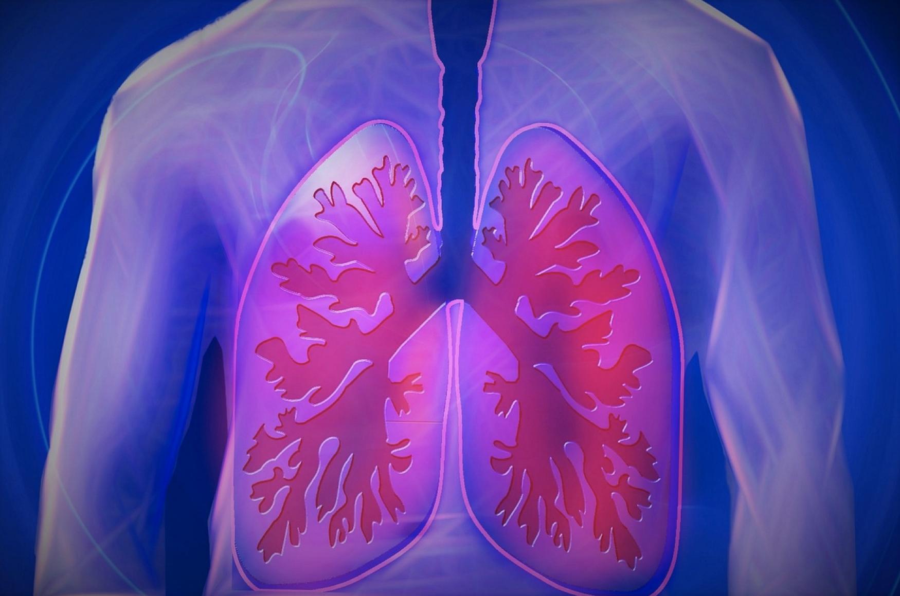 Die Bedeutung Richtiger Atmung Wahrend Des Trainings